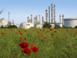 Im Hintergrund sind die Kolonnen der Aromaten-Anlage im Werksteil Friesenheimer Insel des BASF Verbundstandorts Ludwigshafen zu sehen. Bis zu 300.000 Tonnen Benzol kann diese Anlage dem Verbund im Jahr zur Verfügung stellen. Damit ist sie eine zentrale Verbundanlage, die direkt mit den beiden Steamcrackern verbunden ist. In den Crackern entstehen eine Reihe wichtiger chemischer Grundprodukte, darunter vor allem Ethylen und Propylen.   The towers of the aromatics plant on Friesenheim Island, a part of BASF's Ludwigshafen Verbund site, are visible in the background. This facility can supply the Verbund with up to 300,000 metric tons of benzene per year. It is one of the central Verbund plants that are directly linked to both steam crackers. The steam crackers produce a number of important basic chemical products, including in particular ethylene and propylene.