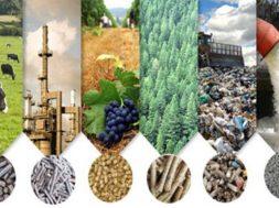 HOME-biomasa2