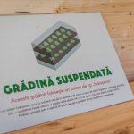 Panou_Gradina de pe acoperis_Kaufland Bucurestii Noi