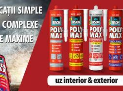 TEMAD_banner POLYMAX