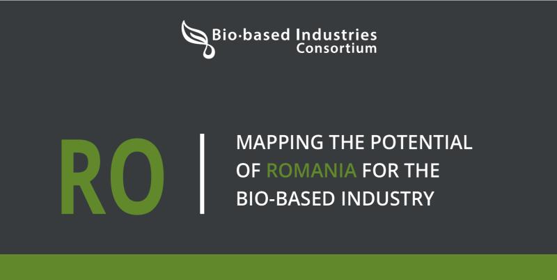 Raport BIC: Biomasa poate deveni noua nișă de exploatare pentru industriile petrochimică și agro-alimentară din România