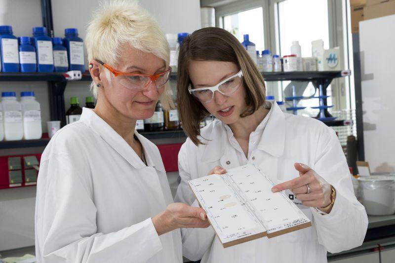 BASF și AkzoNobel au dezvoltat o vopsea albă pentru mobilier, rezistentă la cafea, vin roșu și alte pete